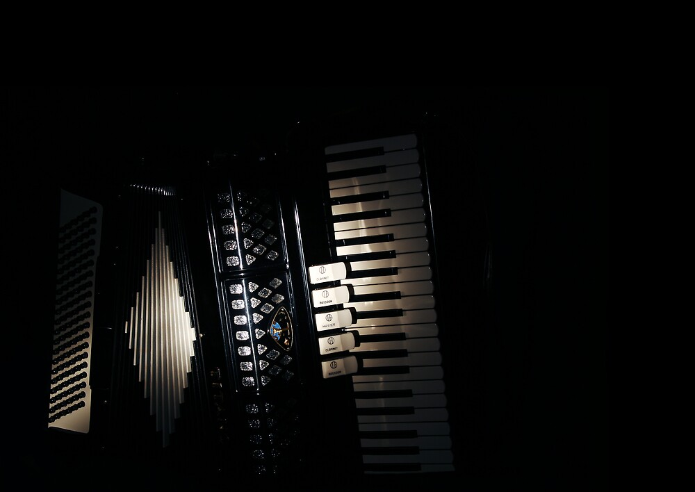 Accordian by Shawn Fennell