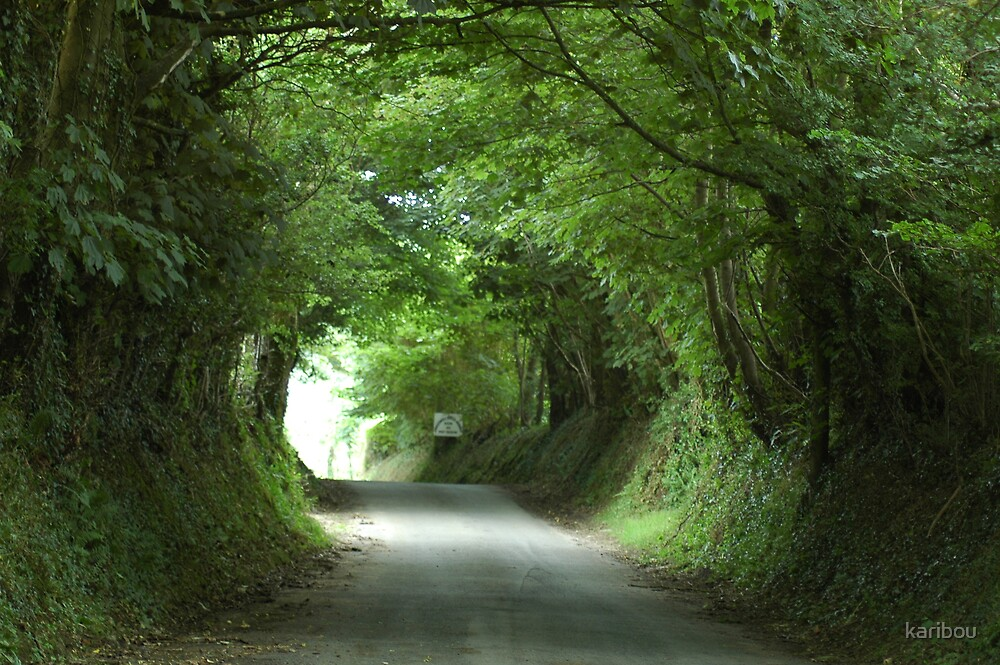 South Wales country road by karibou