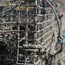 Crab Trap in Maine by neldamays