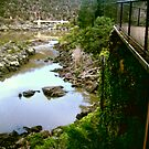 Cataract Gorge at a glance by connorsla