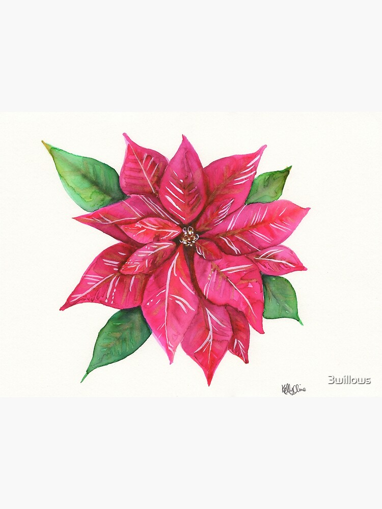 Poinsettia by 3willows
