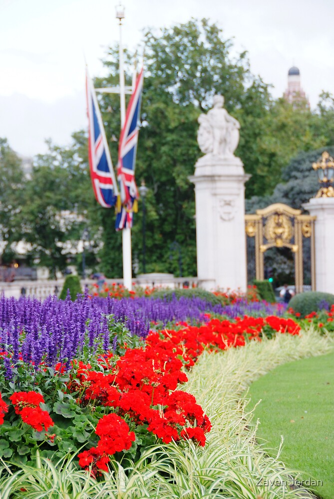 Buckingham Flowers by Zaven Jordan