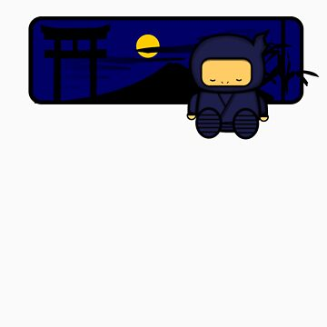 Ninja Sleeps at night too.. by asapee