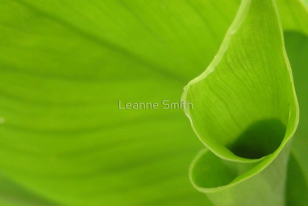 Green by Leanne Smith