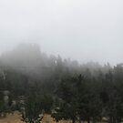 Colorado Fog by KateAndJana