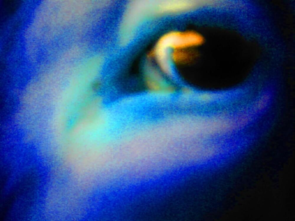 Eye to Eye 3 by wysiwyg