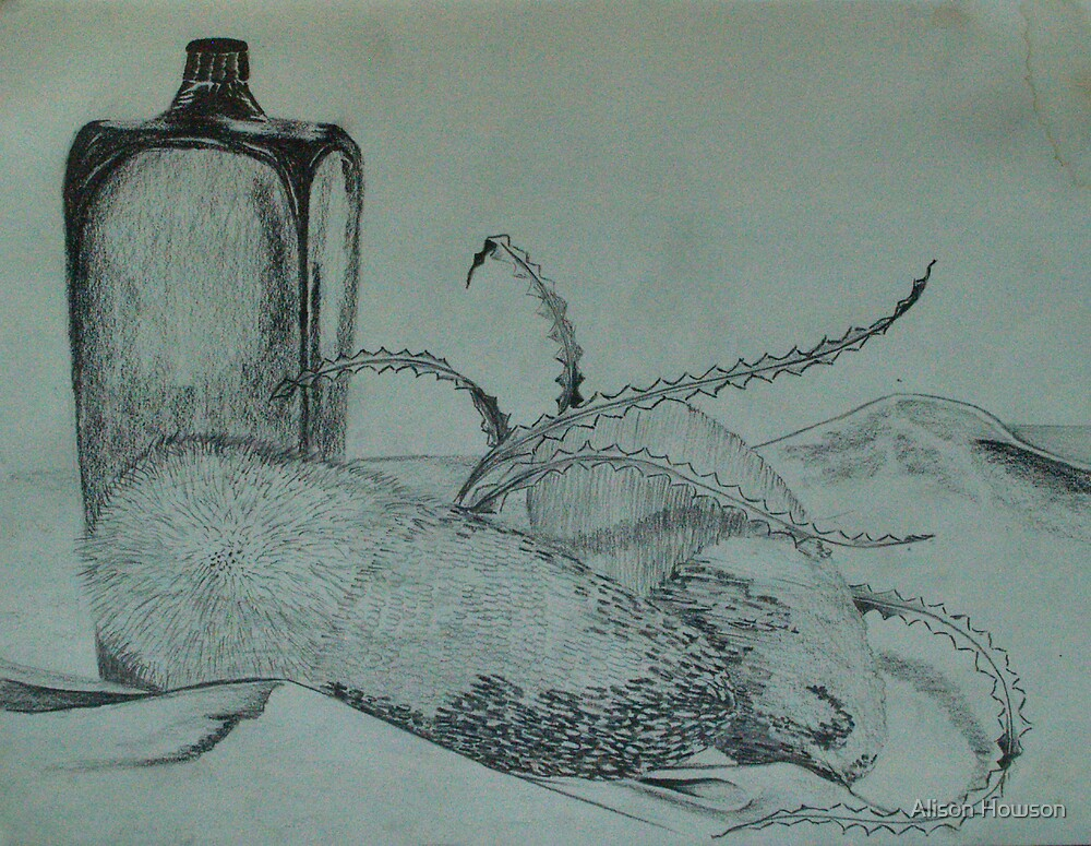 Still Life - Banksia and Bottle by Alison Howson