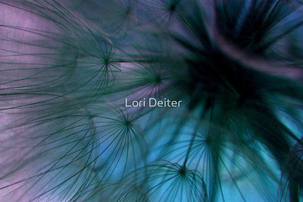 Goatsbeard Seeds by Lori Deiter