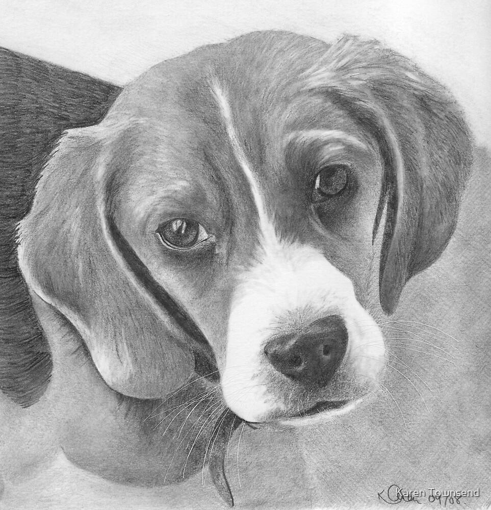 Beagle (updated) by Karen Townsend