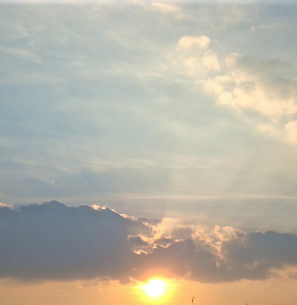 Sundown by Kate Towers IPA