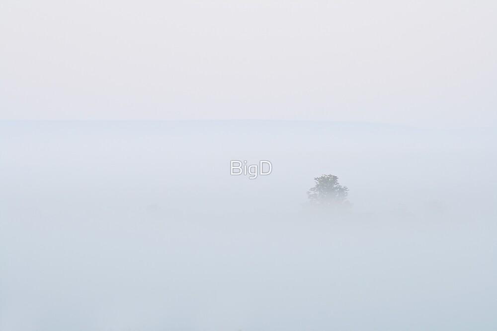 Alone by BigD