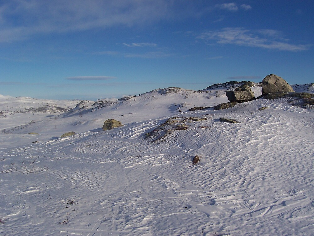 Hallingdal Frozen Plateau by benmacdui