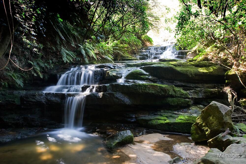 Leura Cascades Blue Mountains NSW Australia by MiImages
