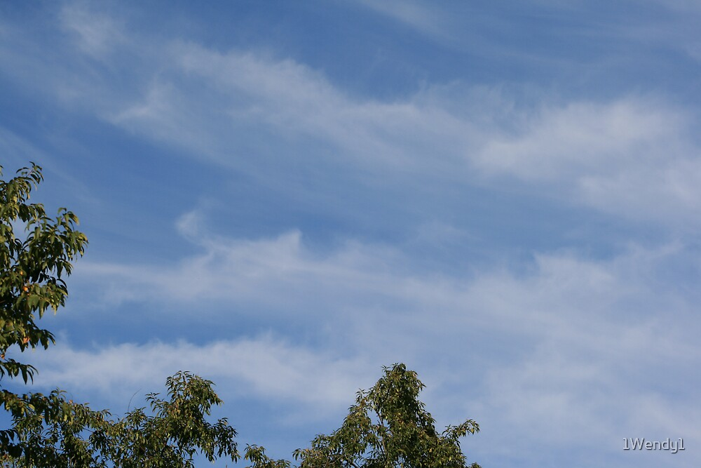 A picture perfect sky by 1Wendy1