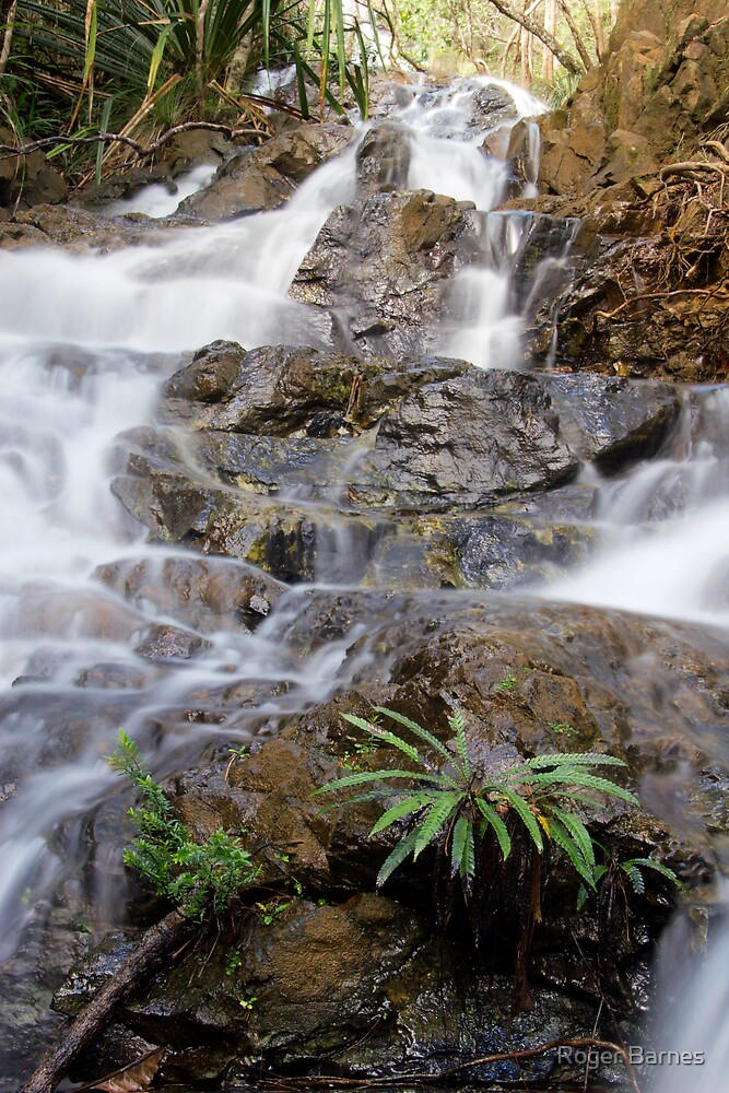 Cascades at Mt Koghi, New Caledonia by Roger Barnes