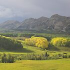 Ohio Creek Valley, Colorado by Tamas Bakos