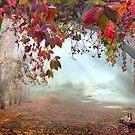 Autumnal Still by Igor Zenin