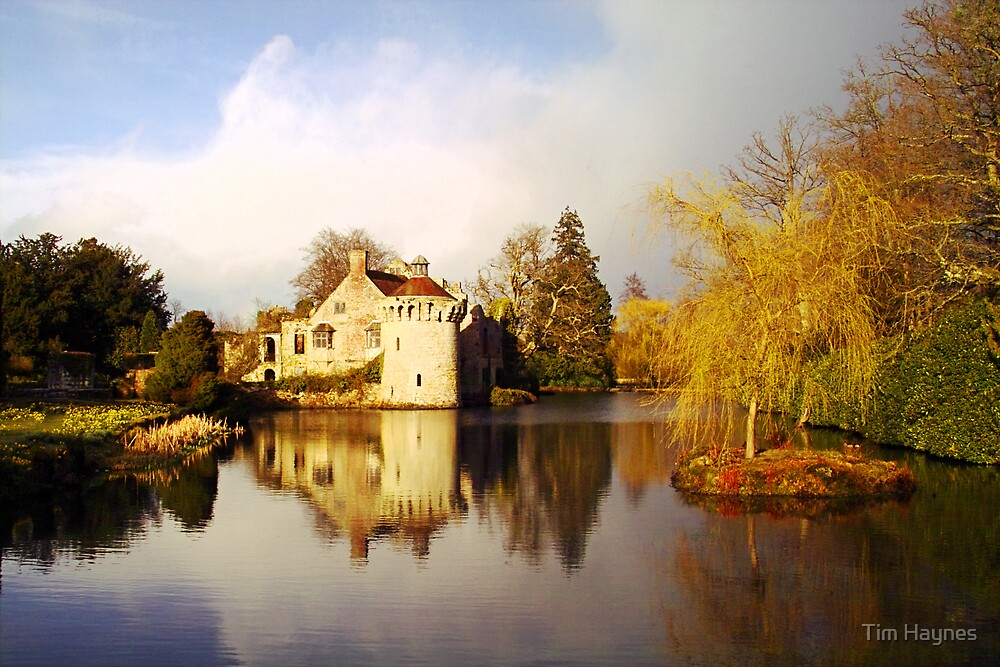 Scotney Castle  by Tim Haynes