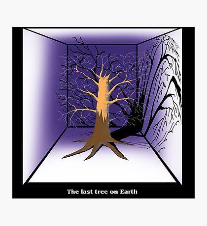 The Last Tree on Earth Photographic Print