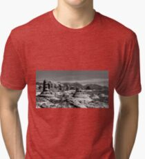 Travel West - Utah Tri-blend T-Shirt