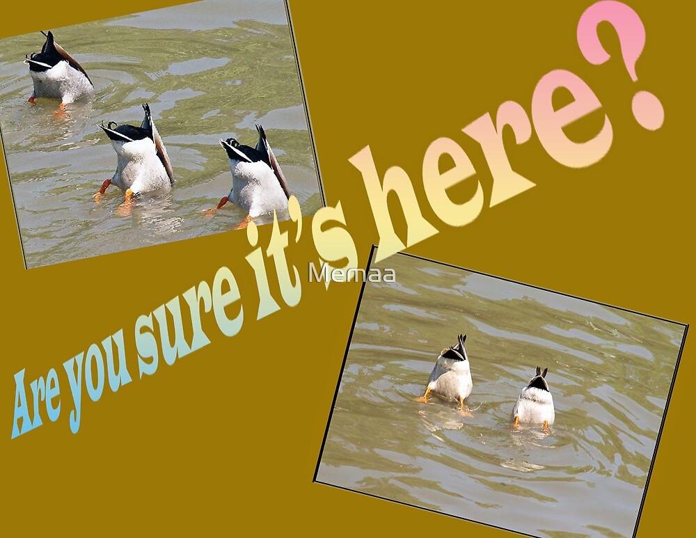 Here? by Memaa