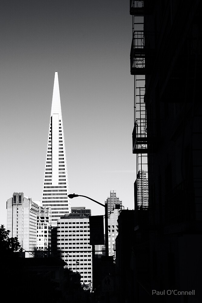 San Francisco by Paul O'Connell
