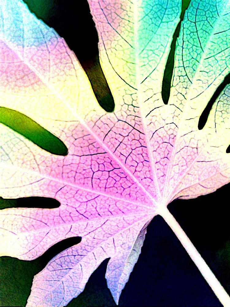 Rainbow Leaf by wysiwyg