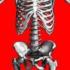 Skeleton Body (red basckground) by adamcampen