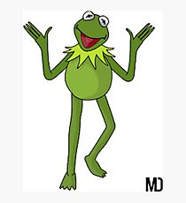 Kermit thee frog here Photographic Print