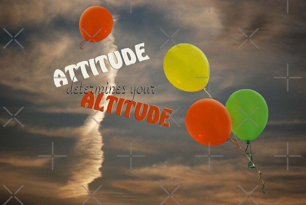 Altitude...Attitude by Maria Dryfhout