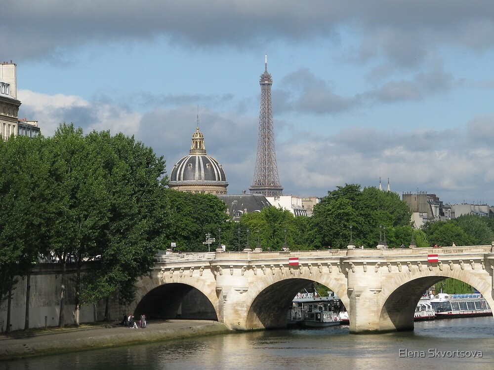 Paris by Elena Skvortsova