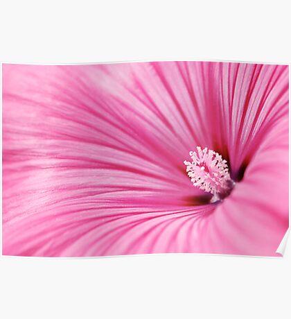 radiation flower Poster