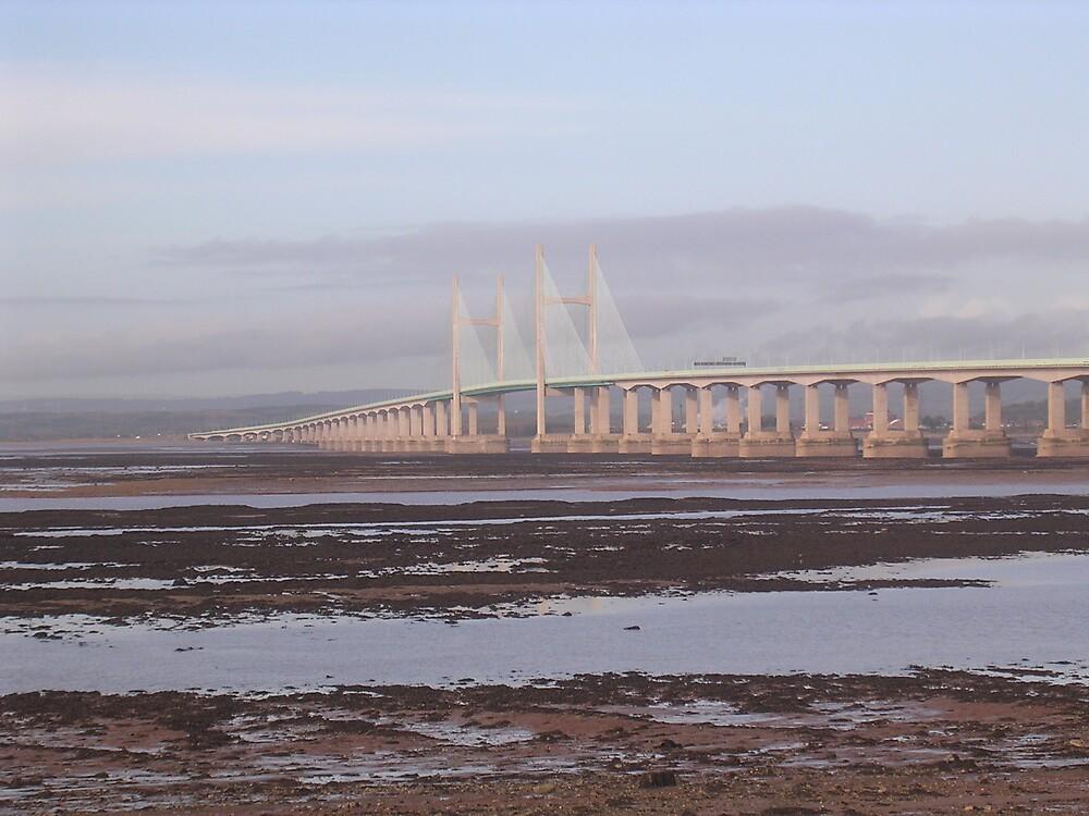 Bridge by amber cuenca