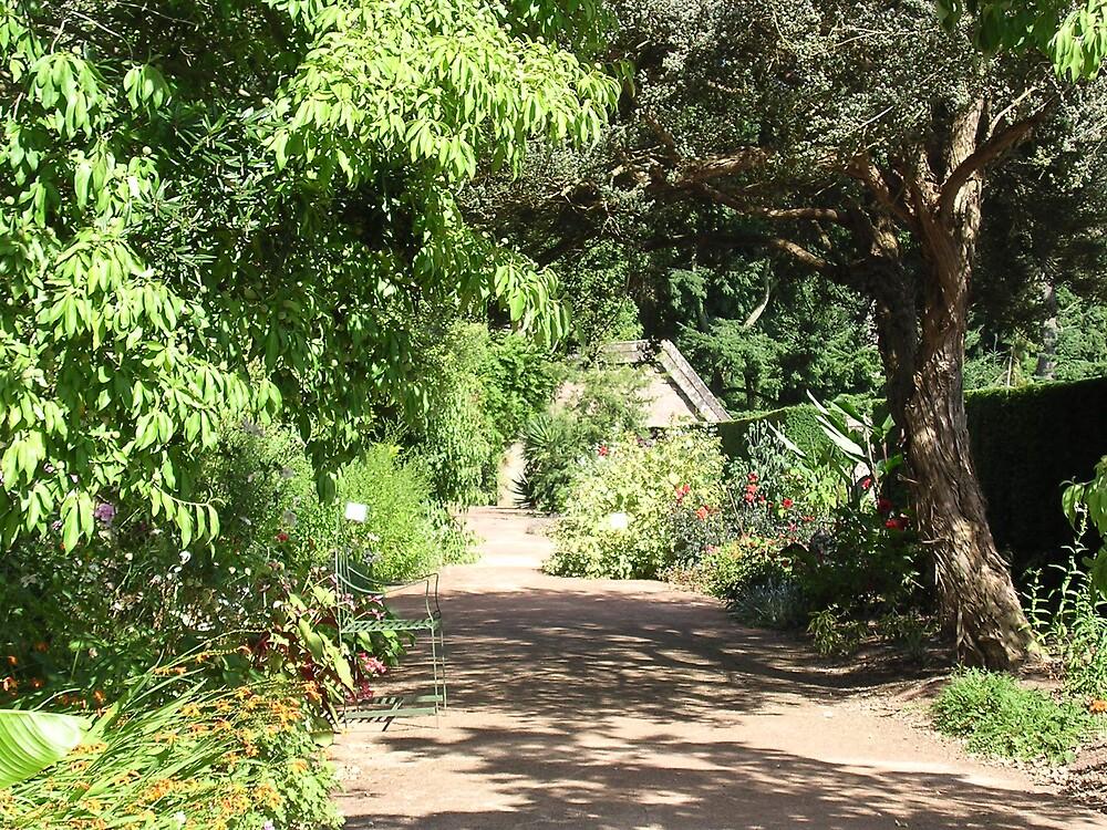 Garden by amber cuenca