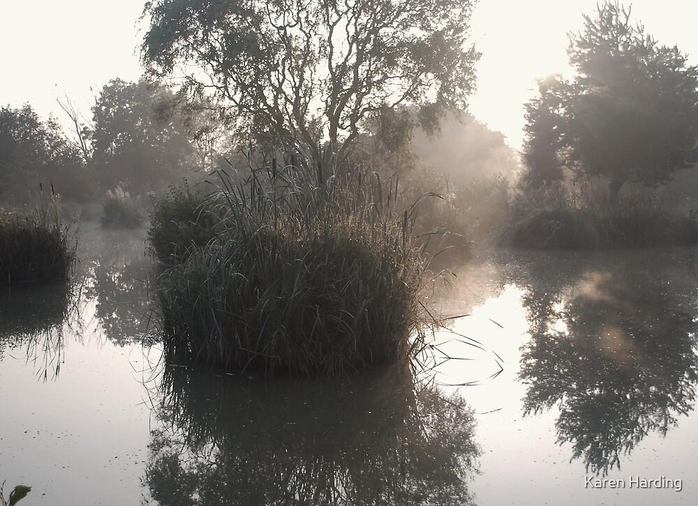 Island Mist by Karen Harding