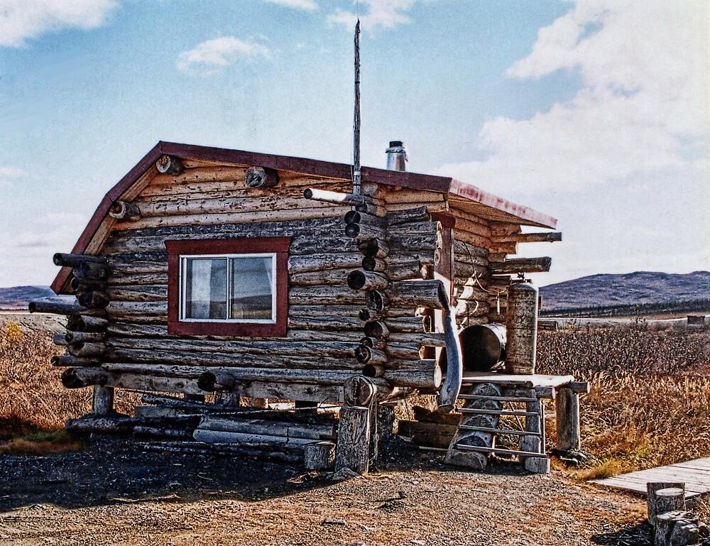 Alaskan Cabin on the Tundra by Patricia Montgomery