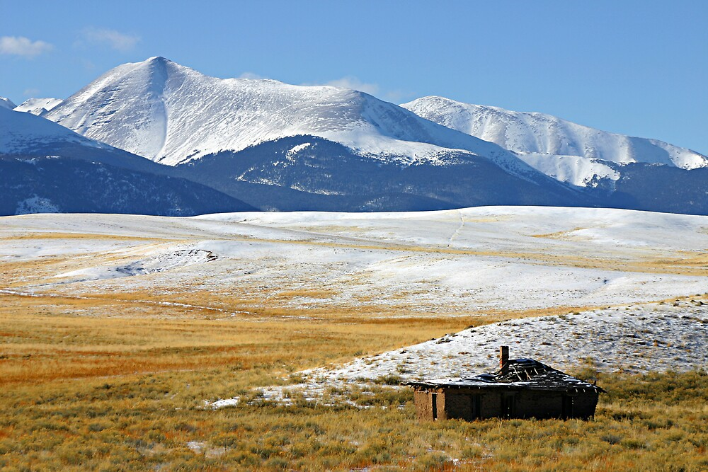 Serene Isolation in Colorado by Patricia Montgomery