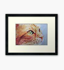 Wonder Cat, photorealistic drawing Framed Print