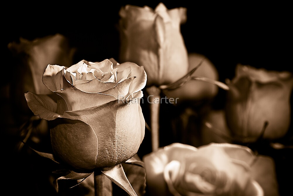 Romance by Ryan Carter