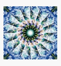 Spiraling Garden Blossoms Photographic Print