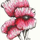 Poppies by lynzart