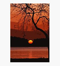 Miracle of Nature Photographic Print