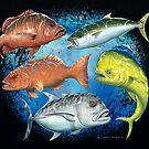 Mixed Fish by David Pearce