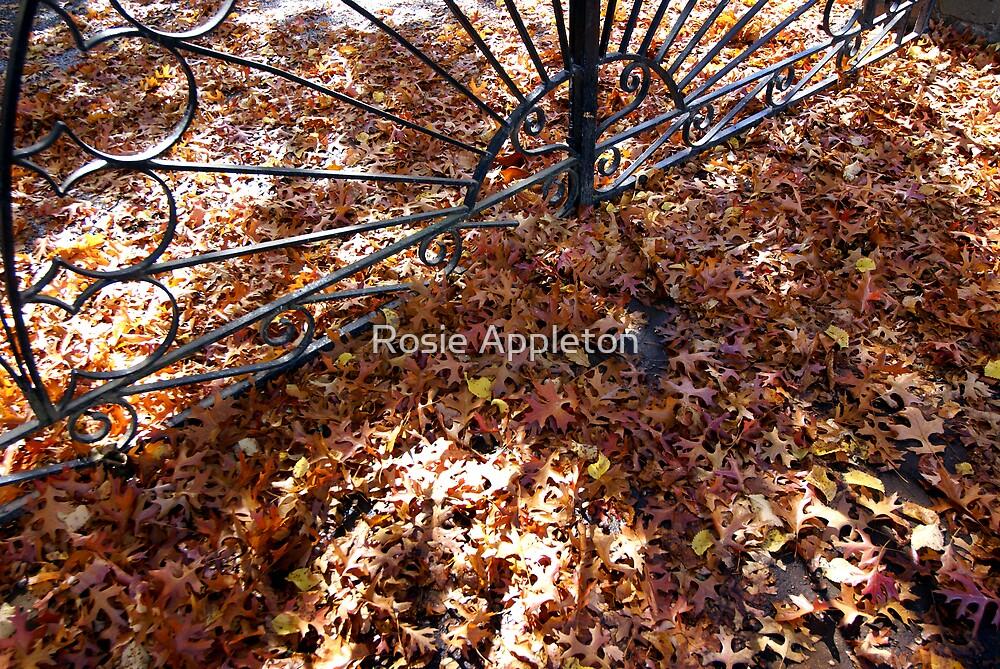 Autumn Gate - Bright, Victoria by Rosie Appleton