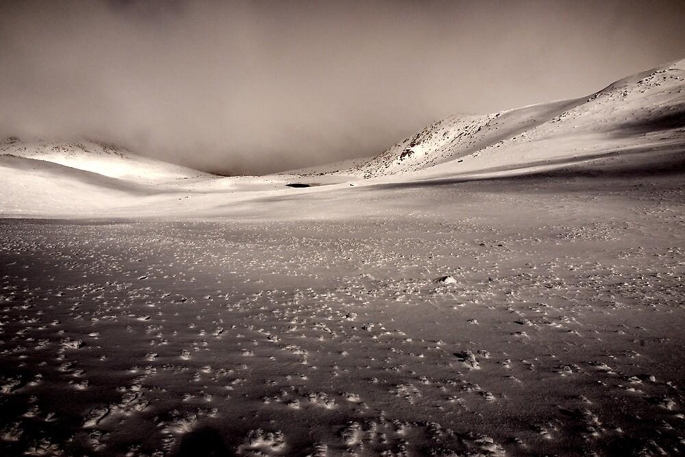 Frozen Solitude by Benn Hartung