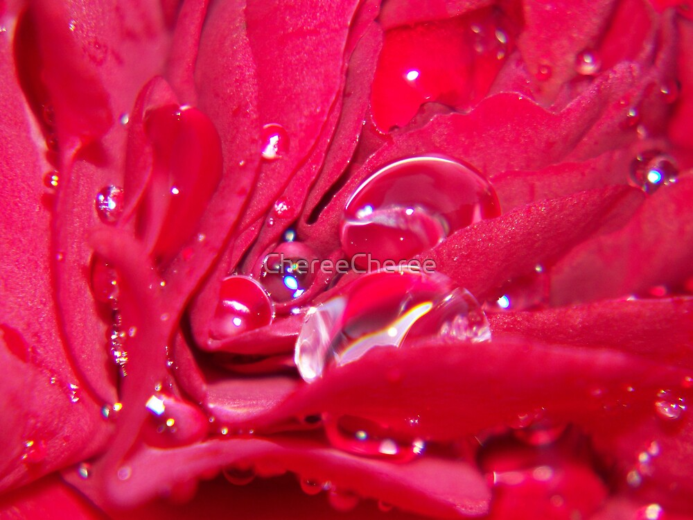 Droplets In Red by ChereeCheree