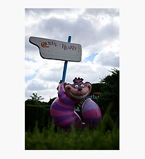 Cheshire Cat in Alice's Curious Labyrinth Photographic Print