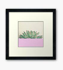 Succulent Dip Framed Print