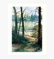 Reflections at Codbeck Art Print