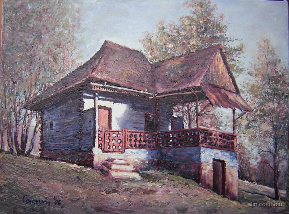 cottage by alin comnoiu